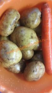 Моем картошку и морковку